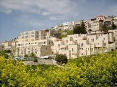 #Safed