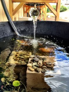 Koi pond from galvanized water trough and stone surround for Aquaponics fish pond