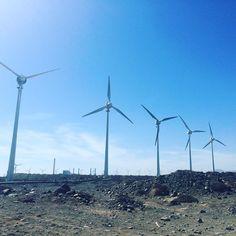 Viento a favor #molinos #windmills #wind#cielo #sky#bluesky #sunnyday #sunday#domingo #ok_mencionados #bellezasimple #beautifulday #renewableenergy #force #energy #picoftheday #grancanaria#canariaa#islascanarias#canaryislands#spain#blue