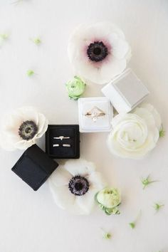 Who Knew Southern Blooms in the Desert Was Such an Epic Combo! Daniel Wellington, Boho Wedding, Deserts, Perfume Bottles, Southern, Bloom, Accessories, Beauty, Desserts