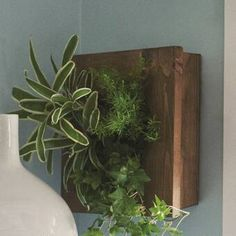 The Holiday Aisle Hegeman Reclaimed Wood Wall Planter Color: Brown Metal Hanging Planters, Railing Planters, Cedar Planters, Diy Planters, Planter Ideas, Concrete Planters, Plastic Planter Boxes, Window Planter Boxes, Living Wall Planter