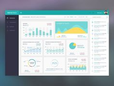 Paymetrics: Dashboard Design by Naresh Kumar