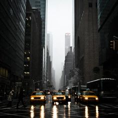 New York, taxis, rain, Nichole McCall