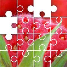 Strawberry Jigsaw Puzzle, 67 Piece Classic.