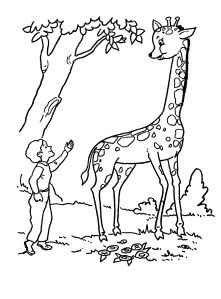 girafa (animale salbatice) de colorat Animal Coloring Pages, Moose Art, Bible, Education, Giraffe Illustration, Pintura, Biblia, Onderwijs, Learning