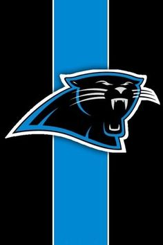 I also value the Carolina Panthers. I see myself as a big Panthers fan, and so do others.