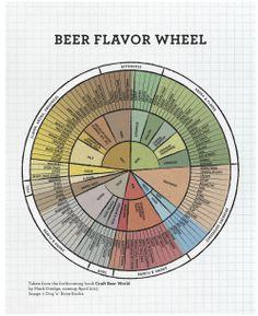 Beer flavour wheels, yummy yummy