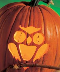 how the Carved Owl Stencil looks on a pumpkin