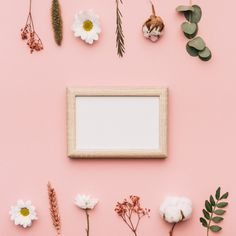Botanical elements and frame in middle Free Photo