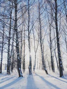 Kom nu vinter med din snö och kyla « B.I.B - Babes in Boyland B.I.B – Babes in Boyland