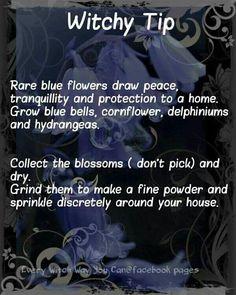 Elemental Magick | Earth Magick - Spellwork, Flower Fascinations