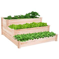 Wooden Raised Vegetable Garden Bed 3 Tier Elevated Plante... https://www.amazon.com/dp/B01M0WH2LD/ref=cm_sw_r_pi_dp_x_fmAQyb10NT7BY