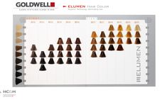 Goldwell Elumen Color Chart (previous).