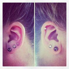 My own ear piercings  -Kayla Walker