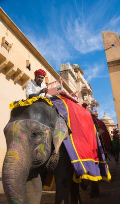 Arrive to Amber Fort , India