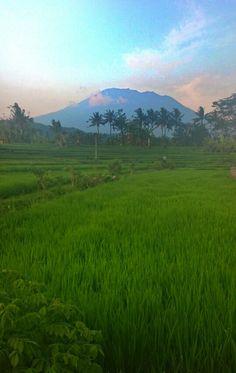 Agung Gunung, outside Sidemen,  Bali