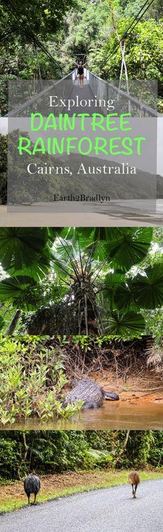 An Adventure Through The Daintree Rainforest | Earth 2 Bradlyn