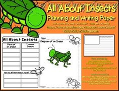 Simple layout for beginner writers on the topic of insects.  Students record facts and key vocabulary about insects from a variety of sources on the planning sheet.  Your students can then use the planning sheet to produce a writing piece using the insect themed writing paper.