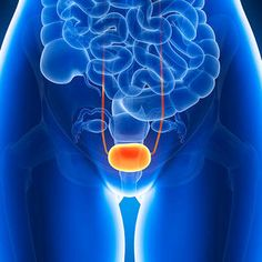 Dr Oz addressed the issue of urinary incontinence, telling women yabout factors that can weaken the muscle and cause a leaky bladder. Try to fix this by doing pelvic floor exercises. Urinary Incontinence, Urinary Tract Infection, Pcos And Diabetes, Painful Bladder Syndrome, Ic Diet, Pcos Infertility, Cluster Headaches, Chronic Pain, Chronic Illness