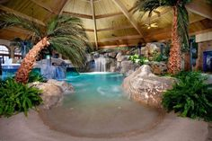 I like how it looks like a sandy beach.  I love palm trees but that's a bit much for an indoor pool.