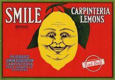 Carpinteria Santa Barbara County Smile Lemon Citrus Fruit Crate Label Advertising Art Print - Other Fruit Crate Label Art Prints - Fruit and Vegetable Crate Label Art Prints Vintage Labels, Vintage Ads, Vegetable Crates, Santa Barbara County, Best Ads, Old Ads, Printing Labels, Concert Posters, Vintage Advertisements