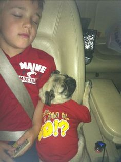 Tired Pug and Tired Kid