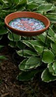 Tomato cage bird bath (or feeder) -  like the idea that you can also plant little seedlings at the base and have some viney climbing flowers adorning your birdbath too! Maybe morning glories?