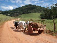 Carro de boi (nos rincões do país)