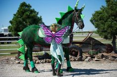 Halloween costumes for horses – creative ideas for pet costumes Horse Halloween Costumes, Pet Costumes, Costume Ideas, Horse Fancy Dress Costume, Horse Halloween Ideas, Happy Halloween, Halloween Party, Horse Braiding, Horse Markings