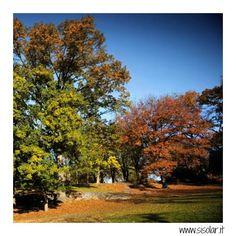 Dall'estate all'autunno in 167 secondi