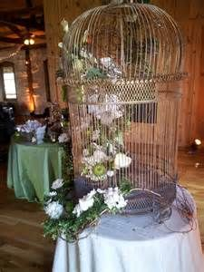 bird cage decor - Yahoo Image Search Results