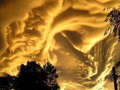 El planeta tierra tiene grandes sorpresas que mostrar y ciertos espectáculos de la naturaleza que se dan en excepcionales ocasiones. Estos son algunos de estos maravillosos fenómenos que nos otorga el universo y suceden en nuestro planeta. La tierra es más extraña de lo que alguna vez hayas imaginado.  Los fenómenos de la naturaleza más impactantes del mundo Nuestro planeta tiene grandes sorpresas que enseñar como son los paisajes, fenómenos, animales y tal vez por su composición esto no se…