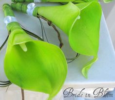 Lime green boutonniere real touch calla by BrideinBloomWeddings, $10.00