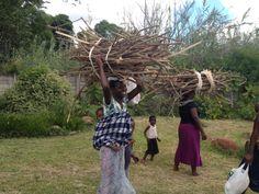 African Woman Collecting Wood. Harare, ZImbabwe.