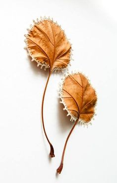 Stitched Leaves by Susanna Bauer