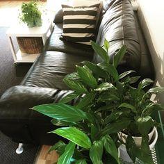 Uusia näkökulmia. Hyvää yötä kauniita unia  #hem #myhome #home #interior #interiør #interiors #instahome #inredning #inspiration #livingroom #livingroomdecor #livingspace #koti #sisustus #sisustusideat #sisustusinspiraatio