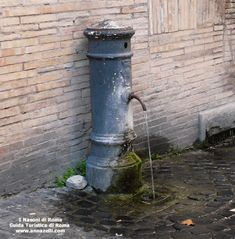 Nasoni le fontanelle di Roma Tivoli Italy, Best Cities In Europe, See It, Yard Ideas, Rome, Backyard, City, World, Water