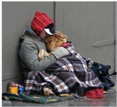 Everyone needs a friend and unconditional love.