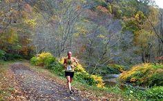 Buffalo Creek Half Marathon | 2015 will be the 10th anniversary!