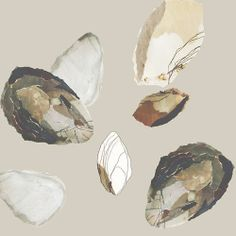 Collage, pen, paint - inspired by mussel shells