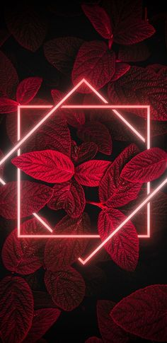 Neon Light Wallpaper, Red And Black Wallpaper, Dark Wallpaper, Pastel Wallpaper, Galaxy Wallpaper, Apple Wallpaper, Iphone Wallpaper Photos, Graphic Wallpaper, Aesthetic Iphone Wallpaper