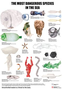 "World's most dangerous underwater predator: Ocean Waste !   Around 8m tonnes of waste go into our oceans every day, polluting our waters and killing all kinds of marine life. At this rate, the ""predators"" pictured below won't just be the most dangerous in the sea – they'll also be the most common.  It's time to endanger these species!"