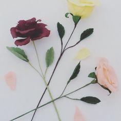 Paper Roses, Bird, Day, Plants, Handmade, Instagram, Hand Made, Birds, Craft