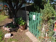 ONE OF THE FRONT ENTRANCES! THE LARGE POT TO THE LEFT HOLDS MOONFLOWERS!