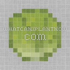 whatcaniplantnow.com