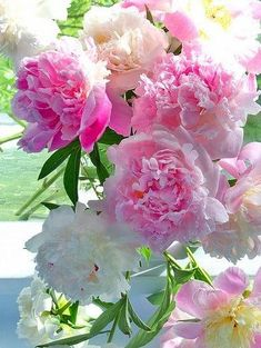 Shared by Ʈђἰʂ Iᵴɲ'ʈ ᙢᶓ. Find images and videos on We Heart It - the app to get lost in what you love. Exotic Flowers, Amazing Flowers, Pink Flowers, Beautiful Flowers, Flower Power, My Flower, Victorian Flowers, Jolie Photo, Arte Floral