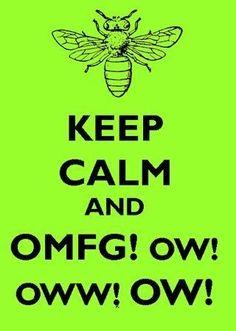 Adventures in beekeeping...