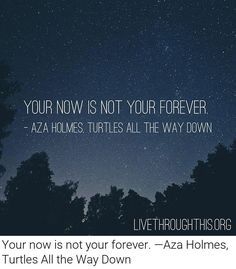 Your now is not your forever. - John Green Turtles All The Way Down