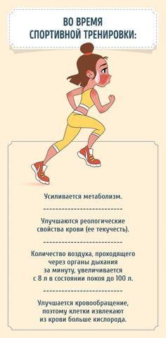 Как реагирует организм на ежедневные занятия спортом http://chert-poberi.ru/interestnoe/kak-reagiruet-organizm-na-ezhednevnye-zanyatiya-sportom.html