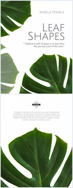 Create an eye-catching book cover template with amazing green leaves book cover template. You can easily print it or publish it online. No technical skills needed. Leaves Of Grass, Green Leaves, Plant Leaves, Leaf Book, Amazing Greens, Ebook Cover, Cover Template, Coffee Table Books, Cartoon Pics